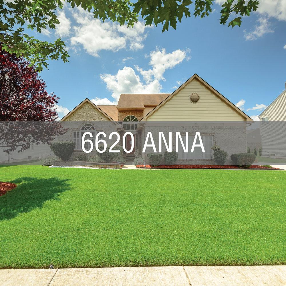 Anna6620_WebCover.jpg