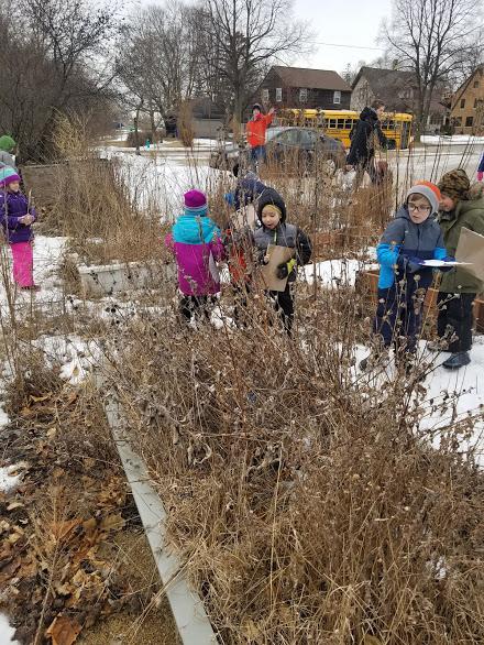 kindergarten garden.jpg