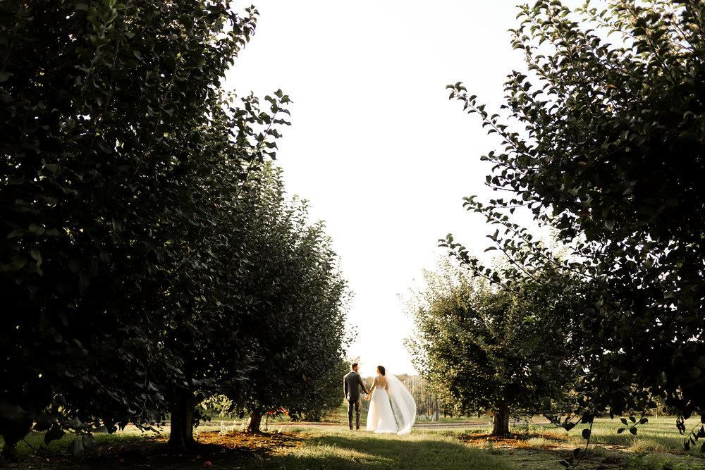 Evans-Orchard-Lexington-Kentucky-Fall-Wedding-23.jpg
