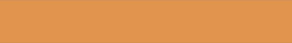 orange border-01.jpg
