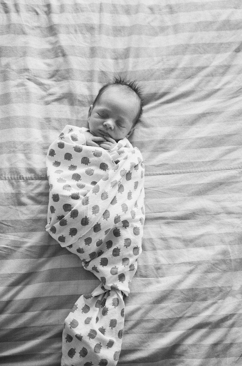 best chicago newborn photographer001.jpg