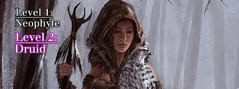 Druid ( Druid  by  Bakirasan )