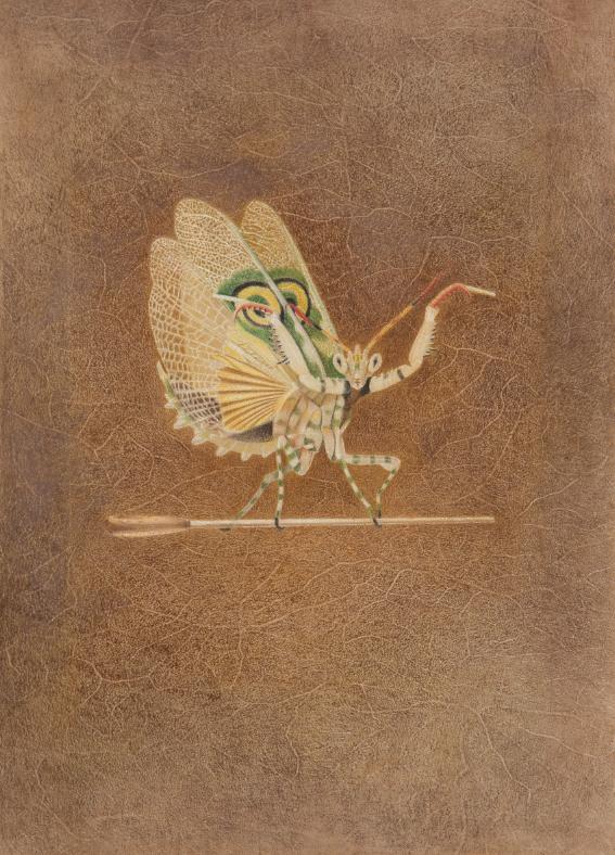 <Una Mantis>