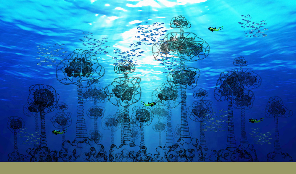 One of our 'scuba habitat' underwater playground concepts. Coral reefs are described as rainforests of the sea...here we have actually created an underwater forest catering to our marine friends inhabiting the seabed, midwater and upper water column, creating a myriad of different experiences and photo opportunities for divers of a all certification levels.