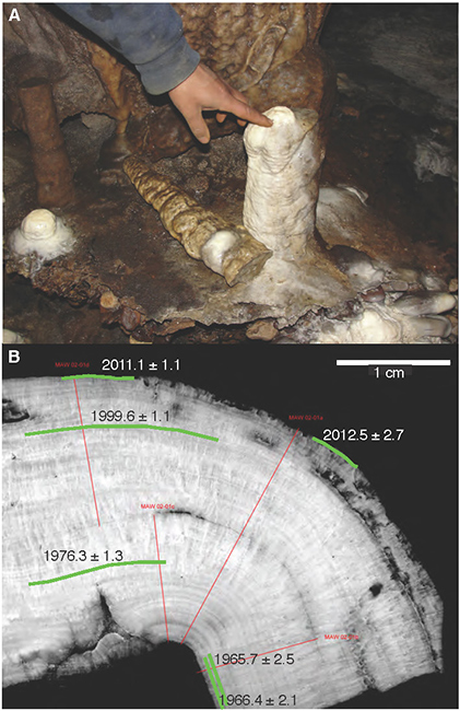 (Top) The stalagmite in Mawmluh Cave before it was collected. (Bottom) A cross section of the stalagmite showing its layers. (Credit: Jessica Oster)