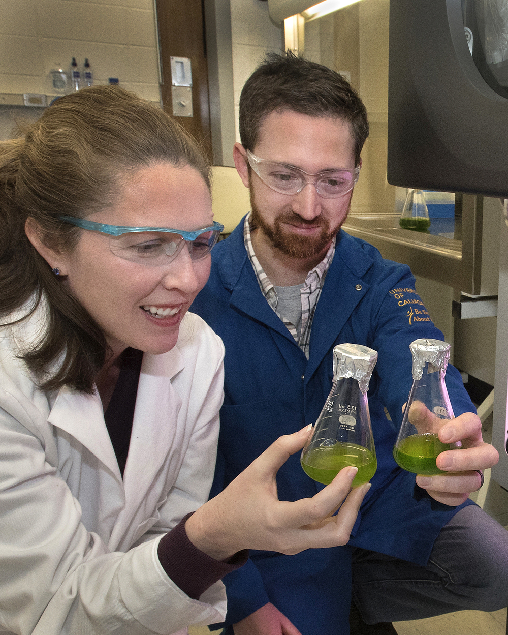Ian and Crysten Blaby are exploring the genes of algae to better understand—and potentially improve—plants' ability to harness energy.