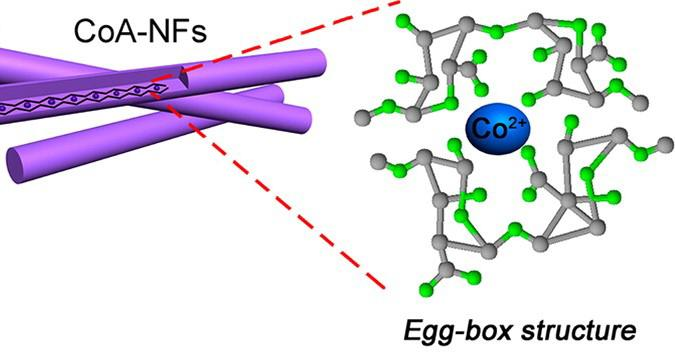 The zinc nano-fiber embedded with the cells of seaweed. American Chemical Society
