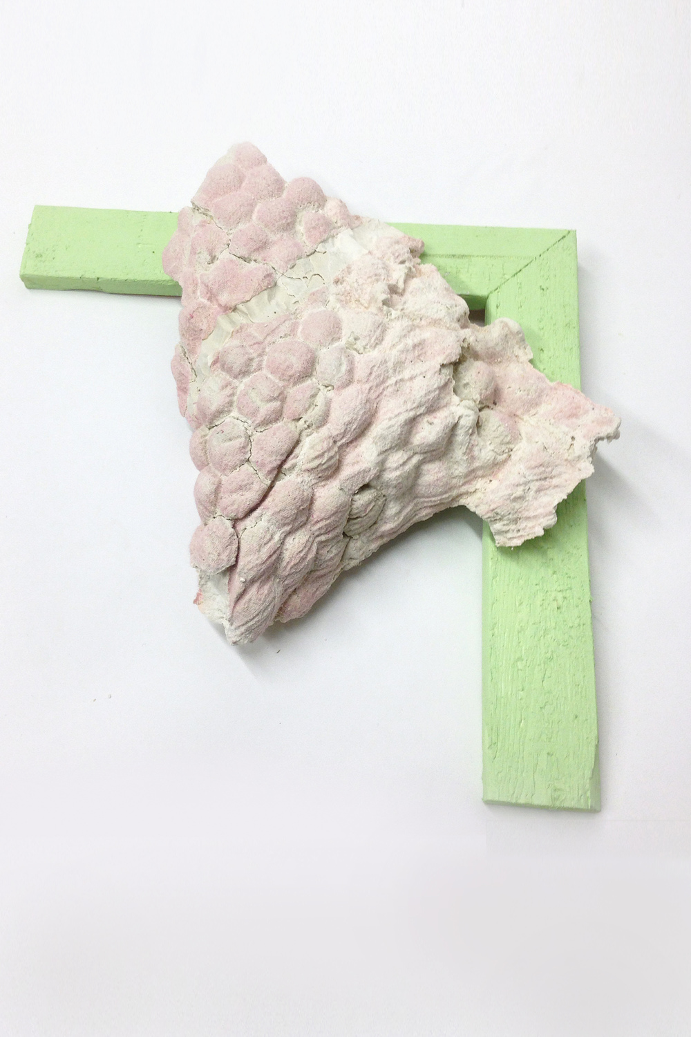 "SACCHAROMYCES CERVISIAE   fabric residue in plaster house paint, pine 15"" x 15"" x 4""  2014"