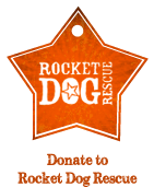 Rocket Dog Icon