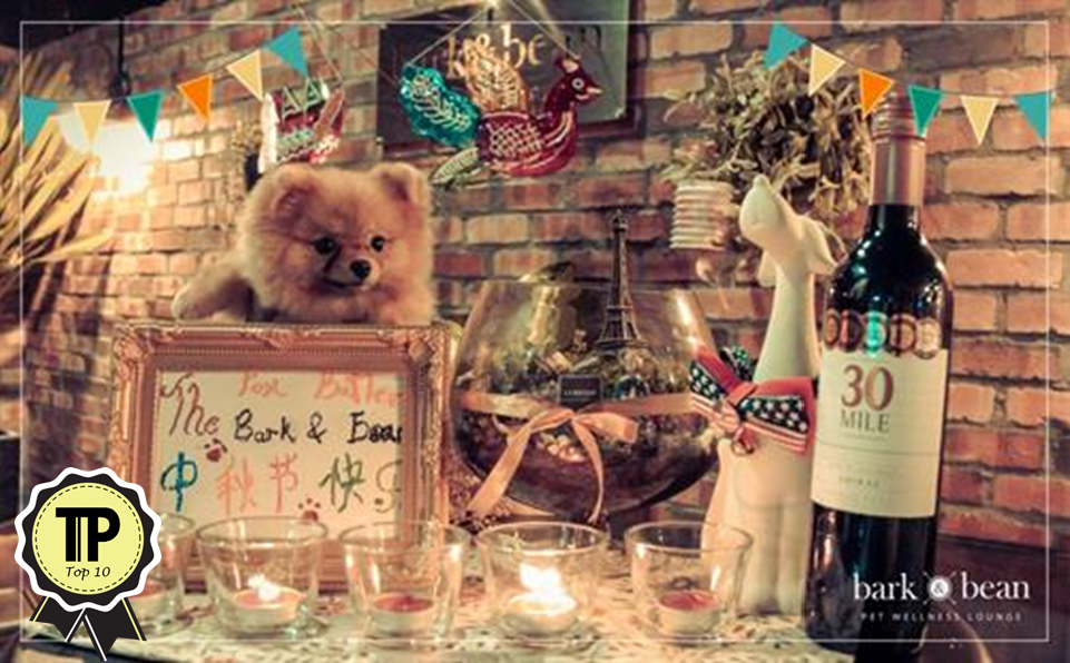 malaysias-top-10-pet-friendly-cafes-bark-and-bean