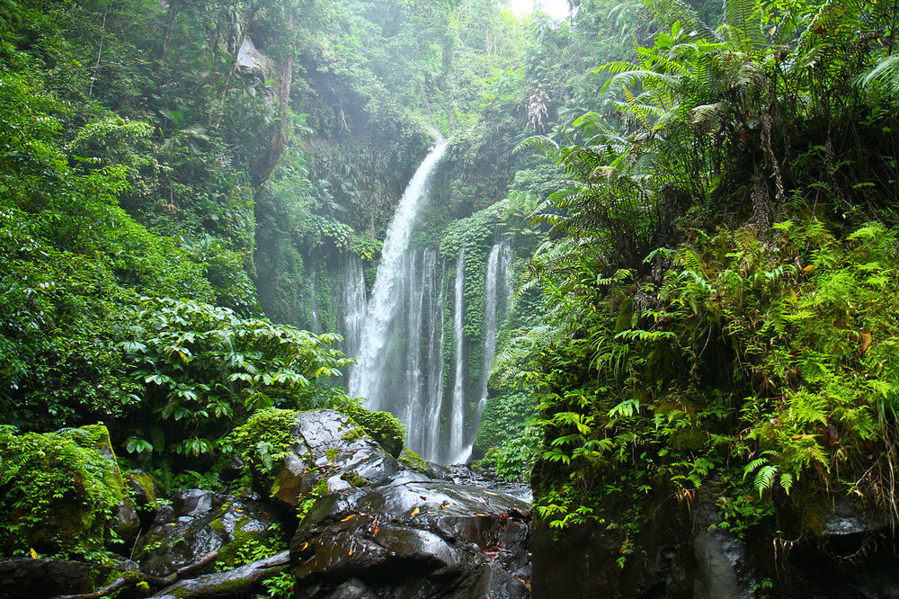 Image Credit:http://www.indonesia-tourism.com/