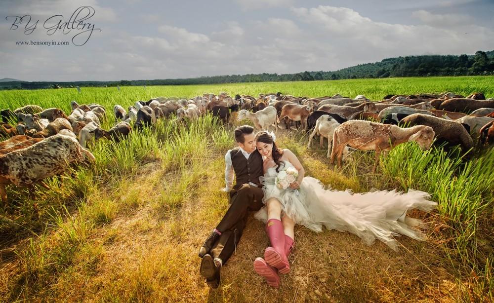 Image Credit:http://bensonyin.com/main/uk-farm-pre-wedding/
