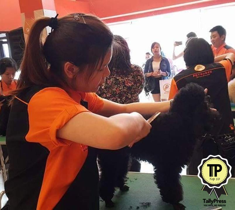 malaysias-top-10-pet-grooming-centres-petsmore