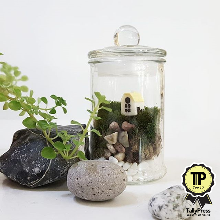singapores-top-10-terrarium-makers-make-your-own