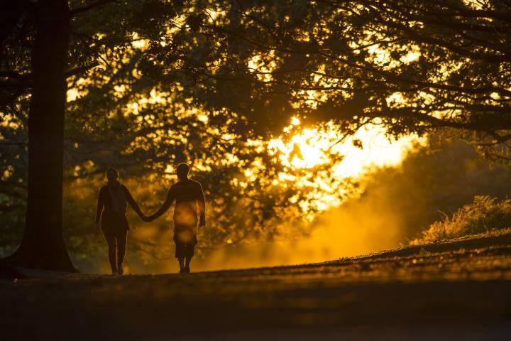 Image Credit: lifehacksng.com