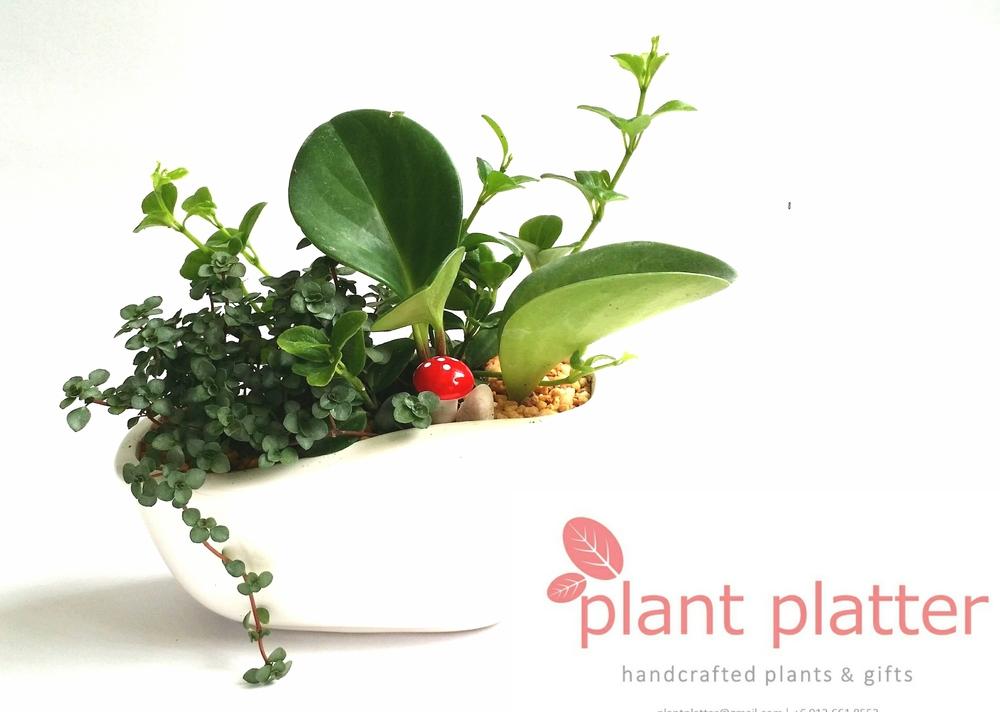 Image credit: Plant Platter