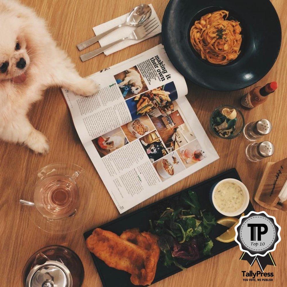 singapores-top-10-pet-friendly-cafes-happenstance-cafe.jpg