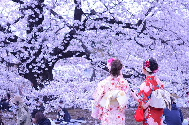 Image Credit:Japan Style
