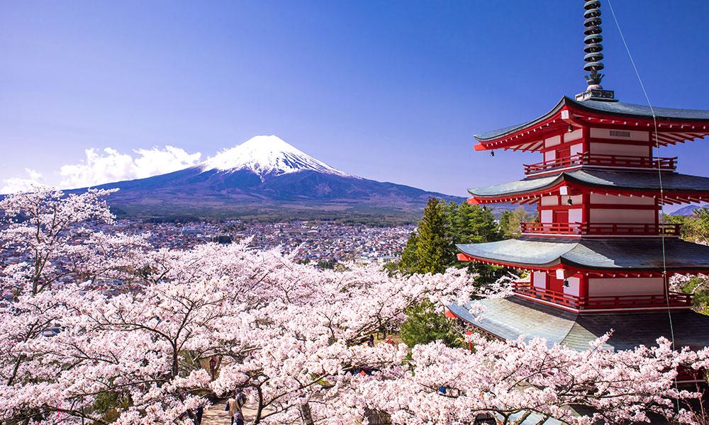 Image Credit:Japan National Tourism Organization