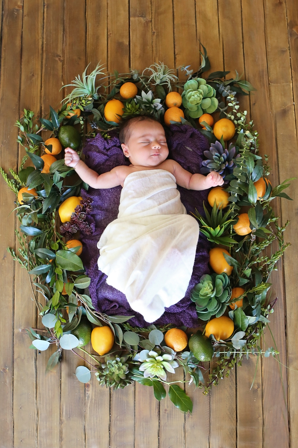 Scottsdale, AZ newborn photography with succulents and citrus wreath. Newborn baby photography with fresh green floral inspirations. Plum purple with cream newborn session.