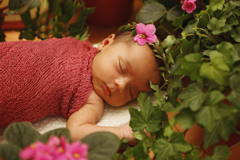 Scottsdale newborn photography session. In-home traveling studio newborn photography in Scottsdale. Valentine newborn photography inspiration. Newborn in pink wrap with fresh flowers.