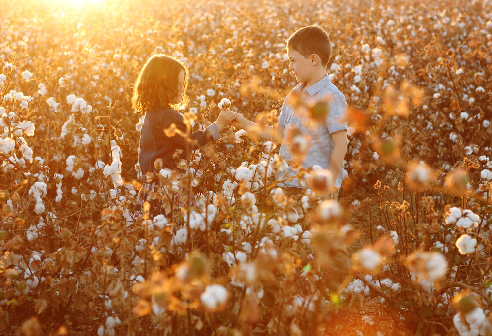 cottonmill67.jpg