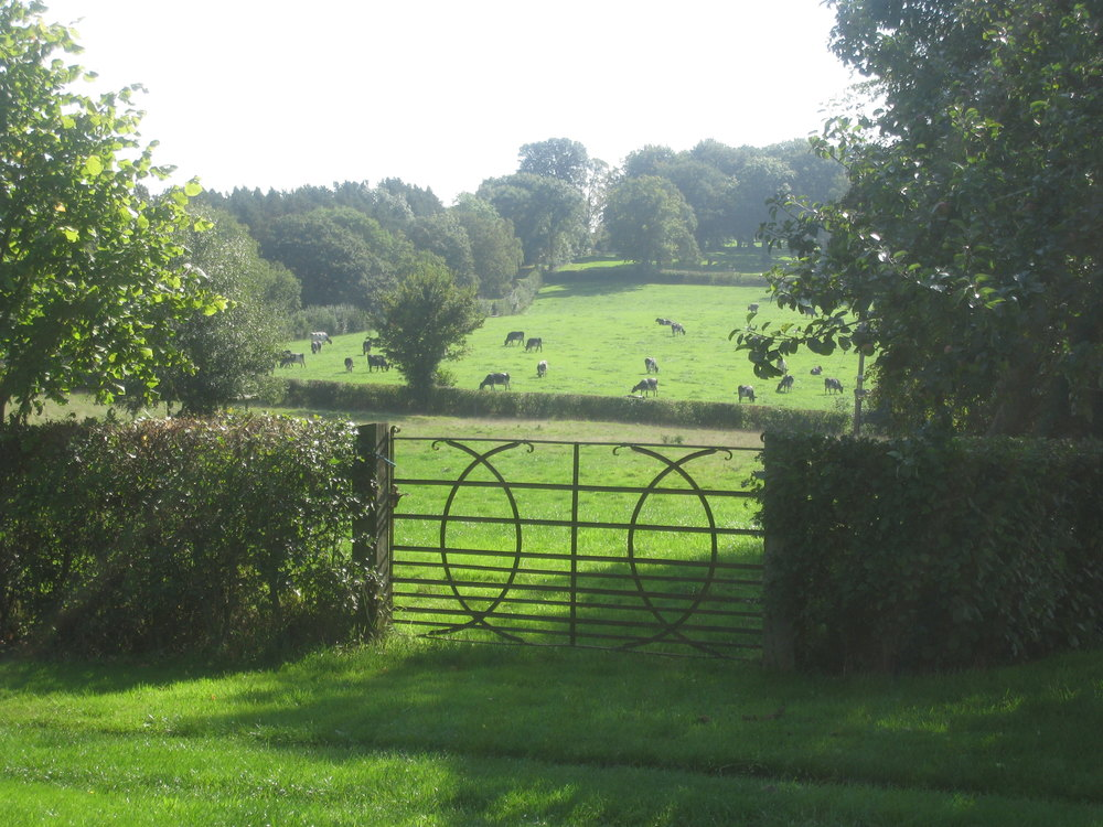 View through gate.JPG