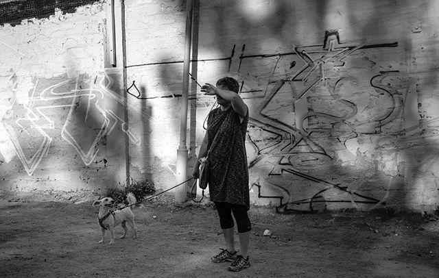 Snösätra Springbeat festival #stigholt #streetphotography #snösätra #graffiti #dog #stockholm #fuji #xpro2