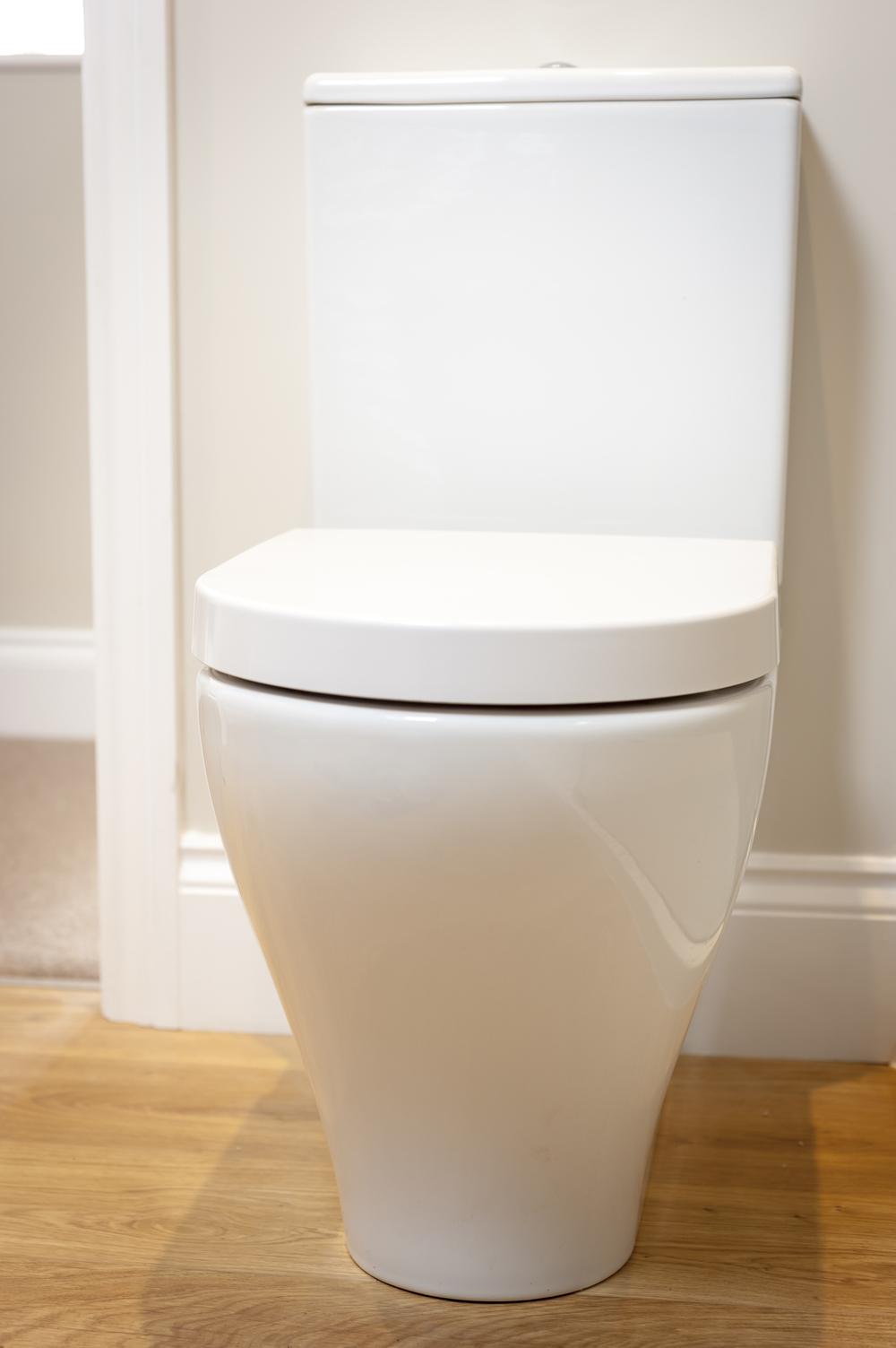 Close Coupled Toilet on Hardwood Floor