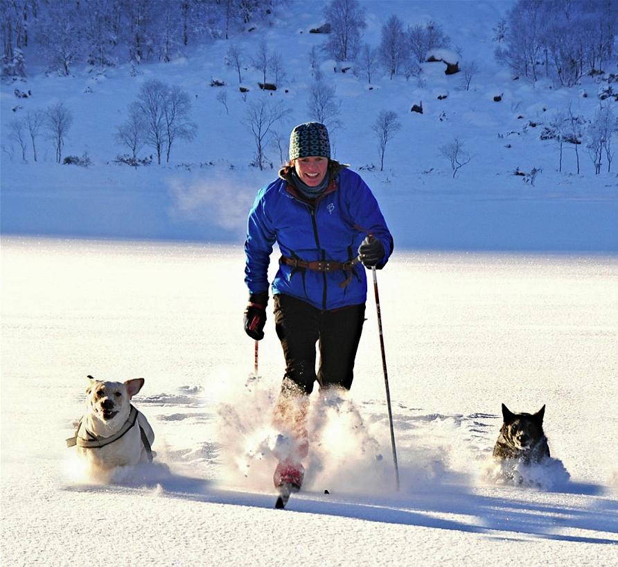 Anita Lie på full fart i skiløypa saman med to av hundane deira.