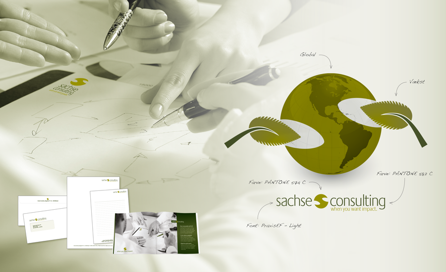 Sache Consulting