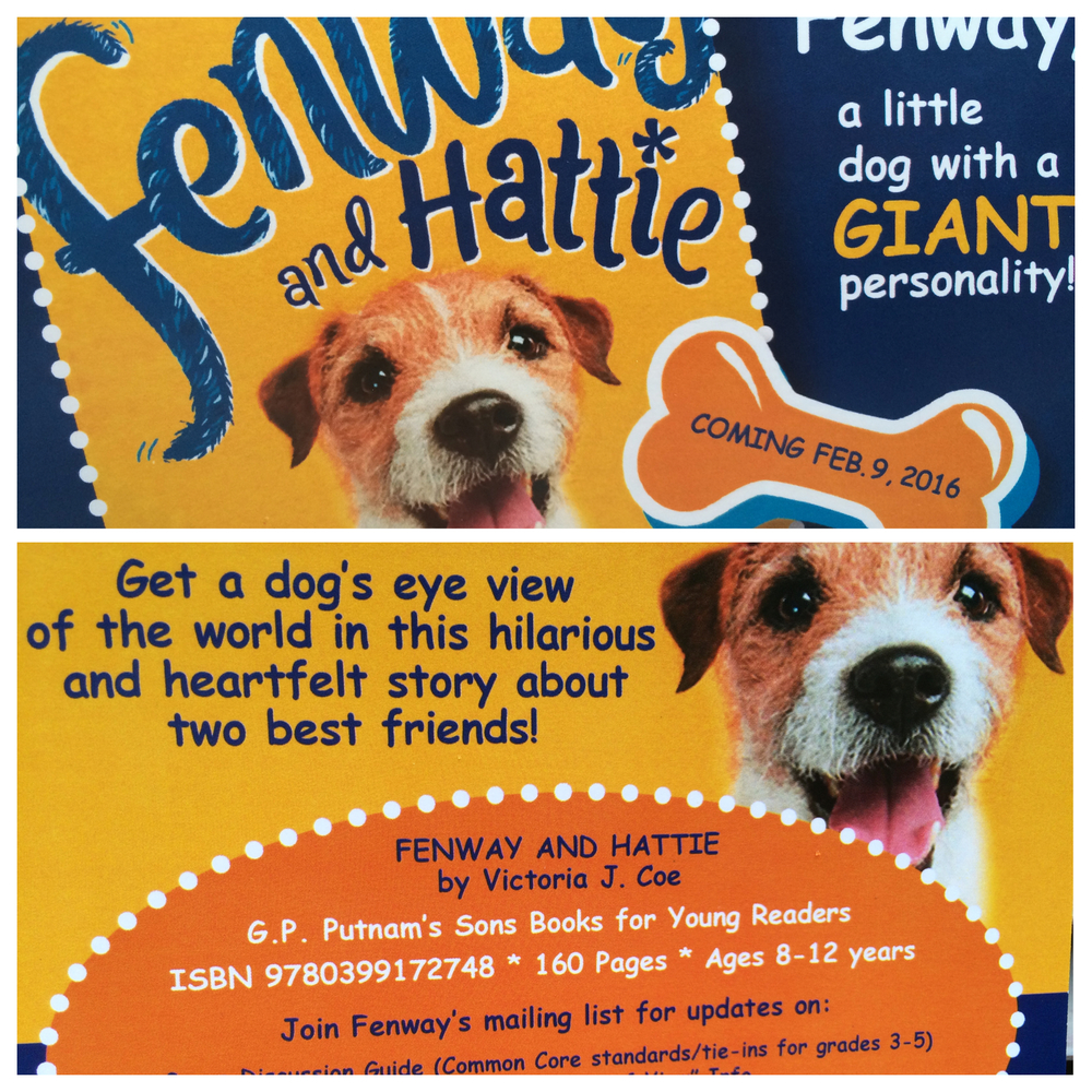 Fenway Postcard