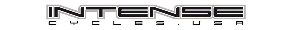 intense logo.jpg