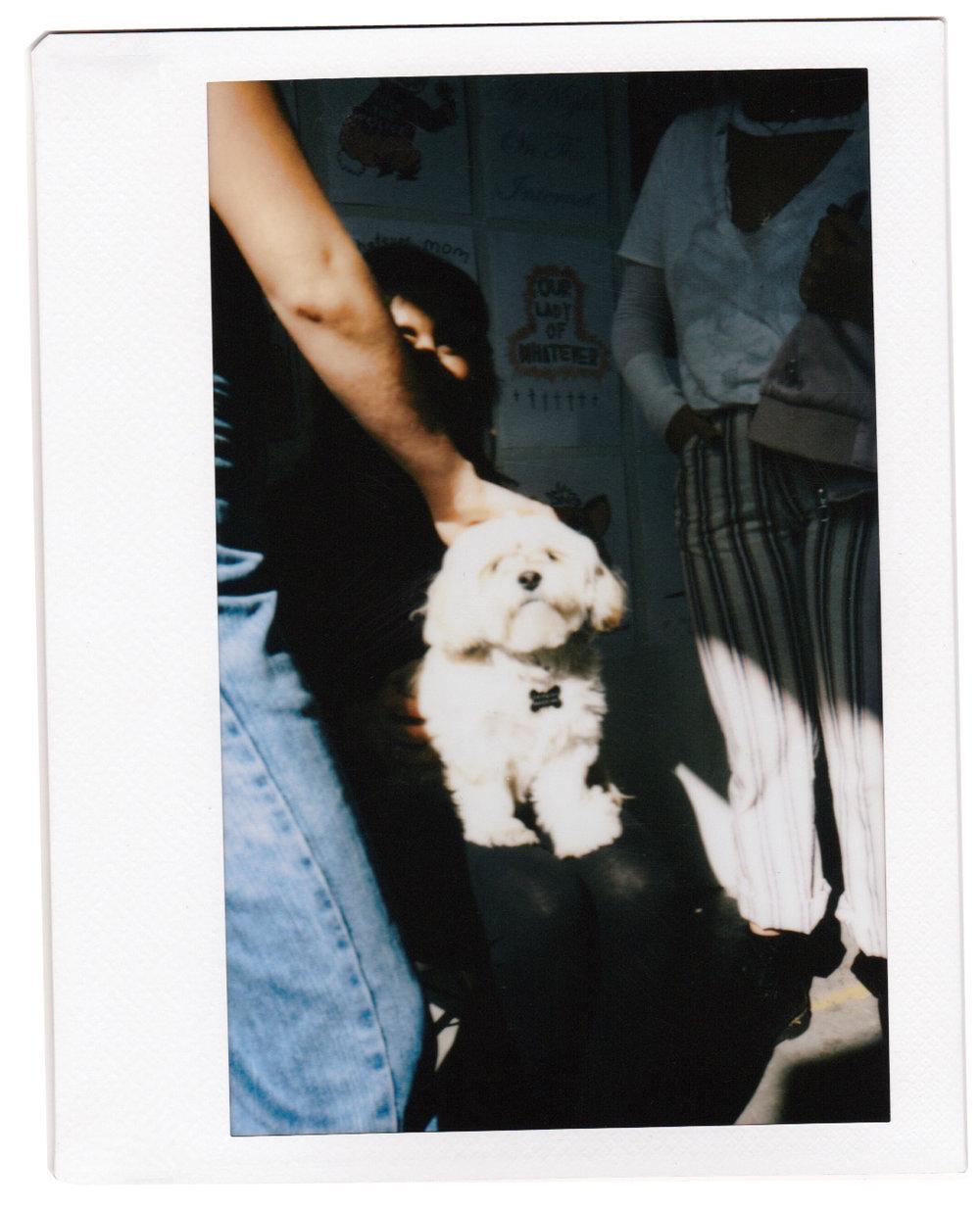 TBVirl Polaroid 17.jpg