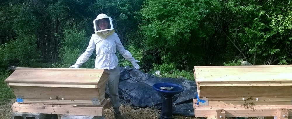 Two top bar hives installed at our Wedgewood Urban Gardens.