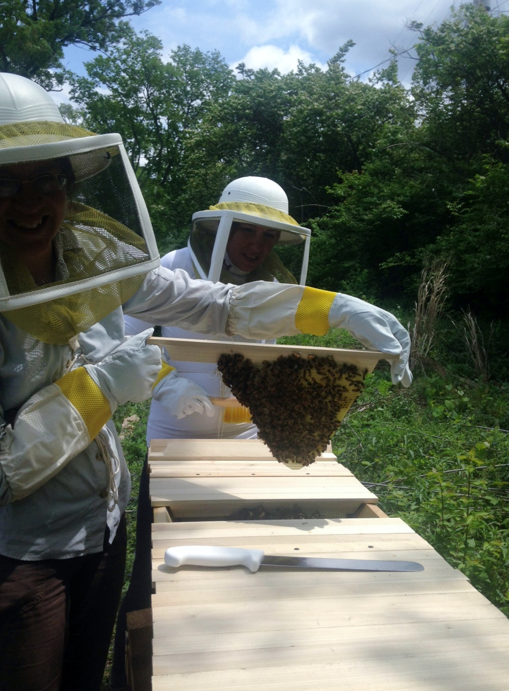 After exactly seven days, the bees are building comb (and making honey) as fast as they can. Garden manager, Christina, learns about finding peace with the bees as she carefully handles the comb.