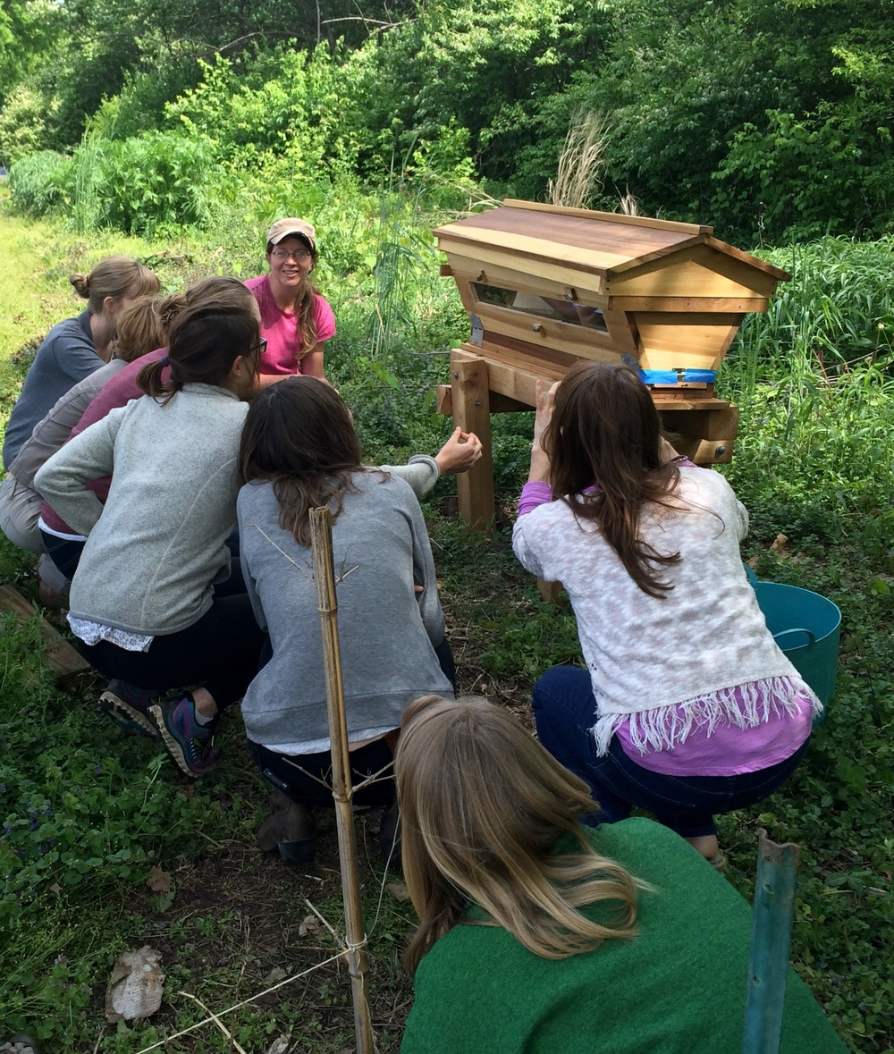 Our staff held a welcome ceremony for the bees at our Woodmont garden bringing gifts of flowers and reading a poem.