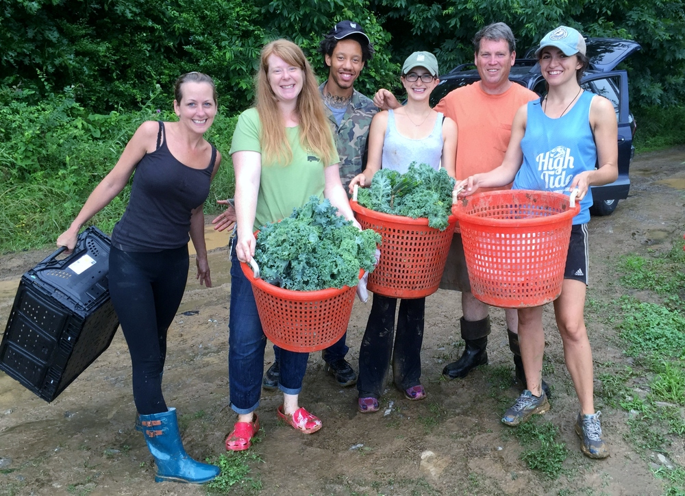 Volunteer Kelly Hines, TNFP kitchen staff Sarah Morgan and Darrius Hall, garden coordinator Madi Holtzman, Hank Delvin Jr. and intern Marijke Kylstra harvest at Delvin Farms. (Marilyn Lane participated but was busy taking this photo!)