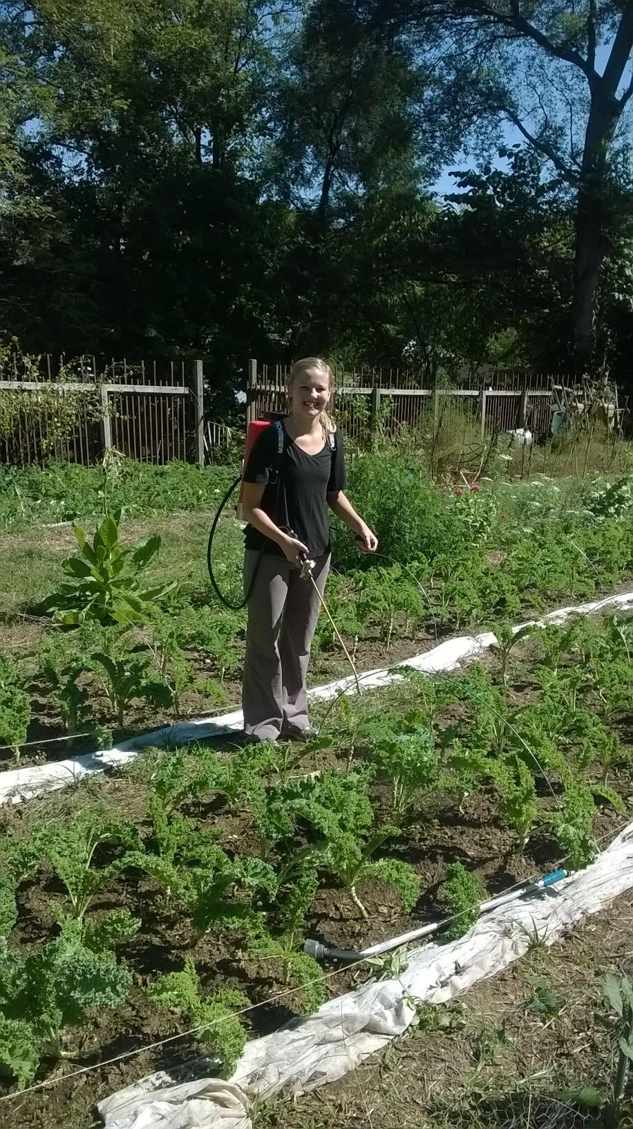 Kate working in the Wedgewood Urban Garden.