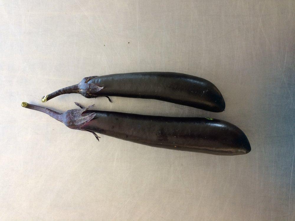 Eggplant_Orient Express.JPG