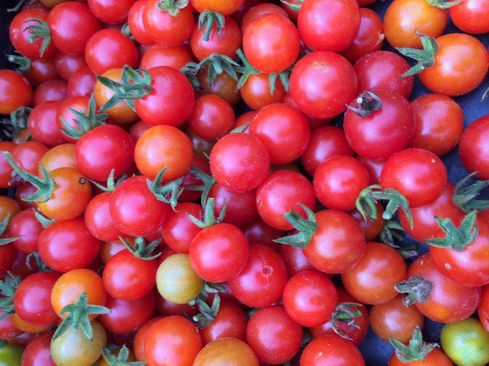 Cherry Tomatoes.JPG