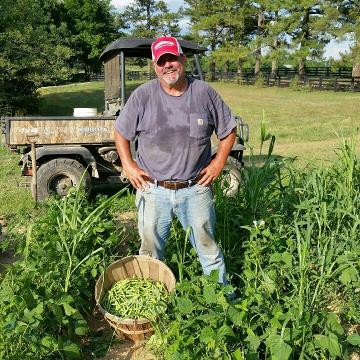 06-19-2016 Green Beans.jpeg