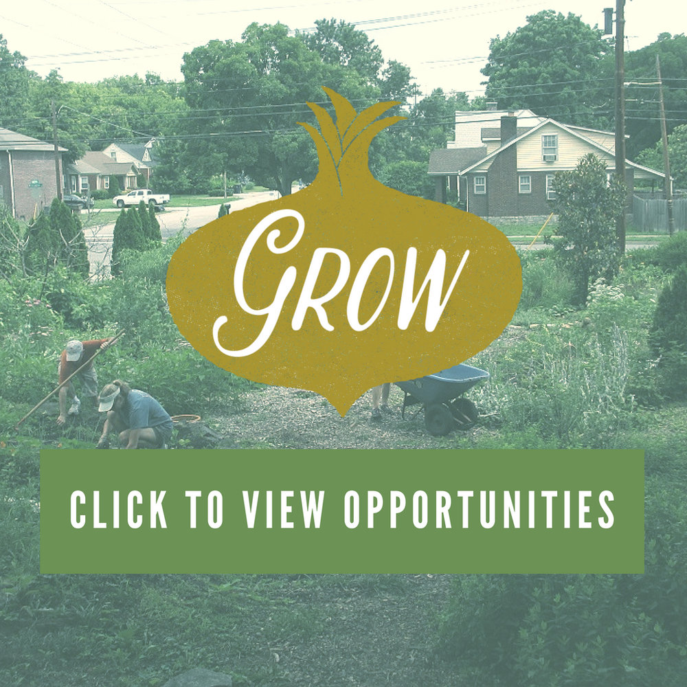 Consider working in one of our urban gardens! Whether you're a garden novice or a seasoned pro, we can put your skills and abilities to good use. Depending on the season, garden tasks include planting, weeding, composting or even harvesting.