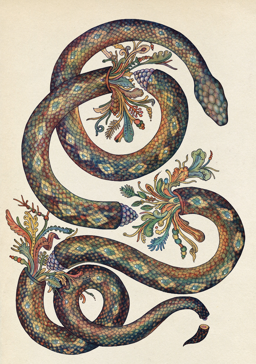 katie-scott :     New Snake print for  Urban Outfitters  is out now.     I actually think I'm in love - this is some of the most beautiful illustration I've ever seen!
