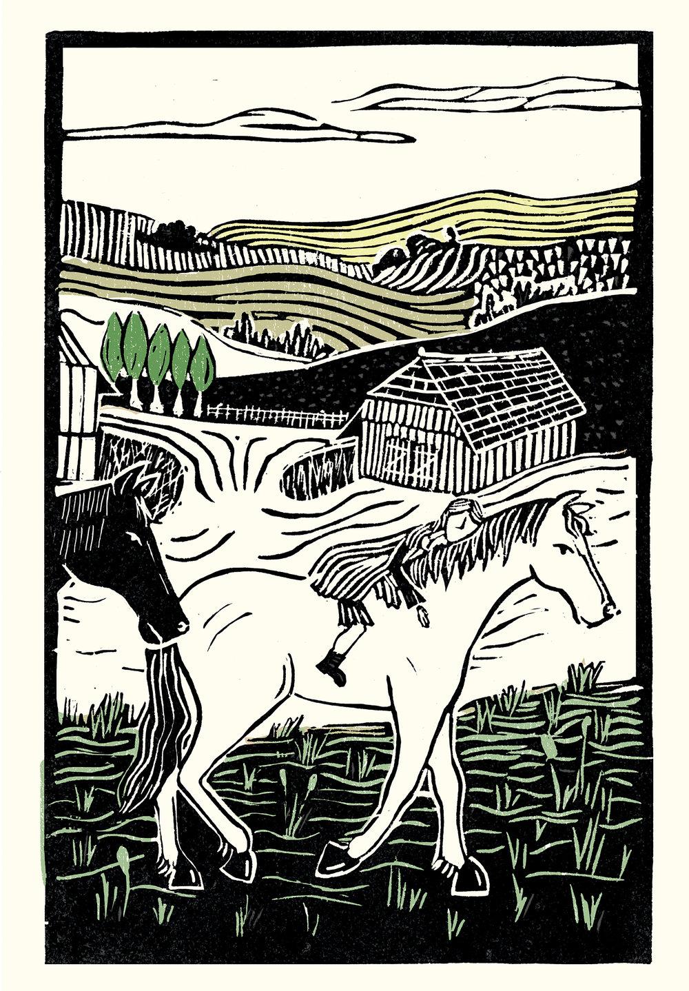 War Horse #2