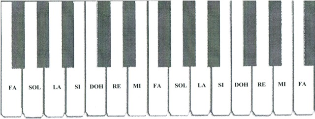 Organ Piano Drawing Each Note on The Keyboard