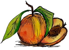 fruit_05.jpg