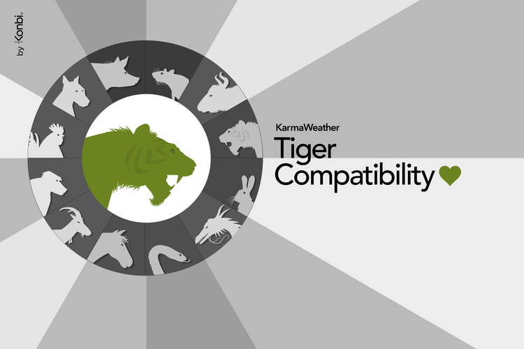 Tiger's love compatibility with the 12 Chinese zodiac signs