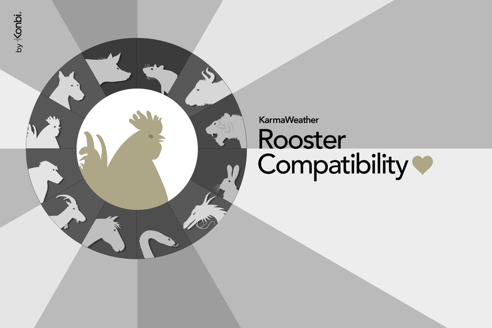 Rooster compatibility