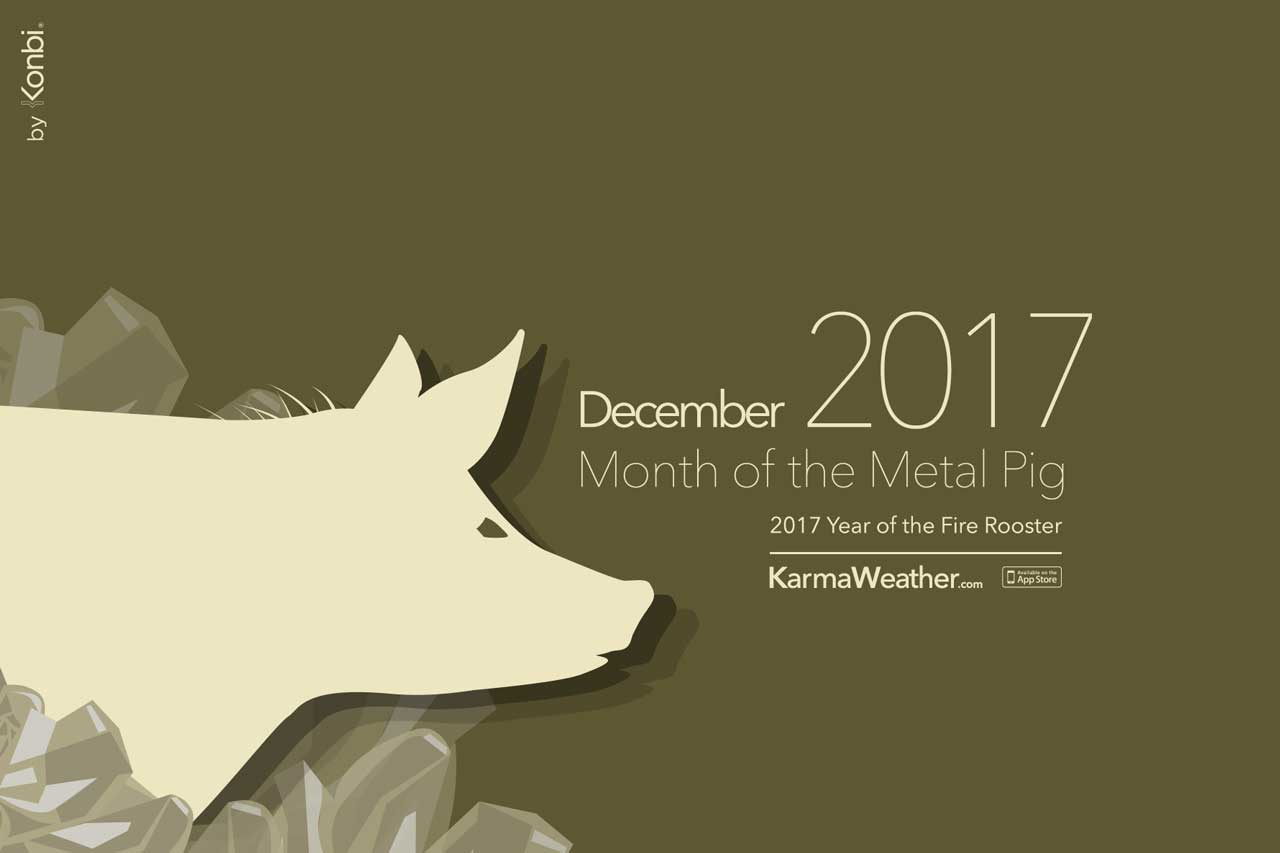 3147b628f 🐷 December 2017 Daily Chinese Horoscope - Monthly horoscope
